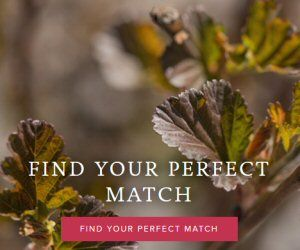 bnb find your match