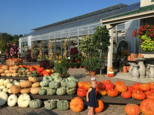 Fall Fest at Miller Plant Farm