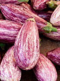 Pinstripe Eggplant