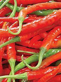 Cayenne Hot Pepper