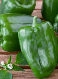 Sweet Green Bell Pepper