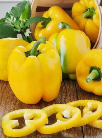 Yellow Bell Sweet Pepper